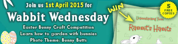 Wabbit Wednesday 1st April